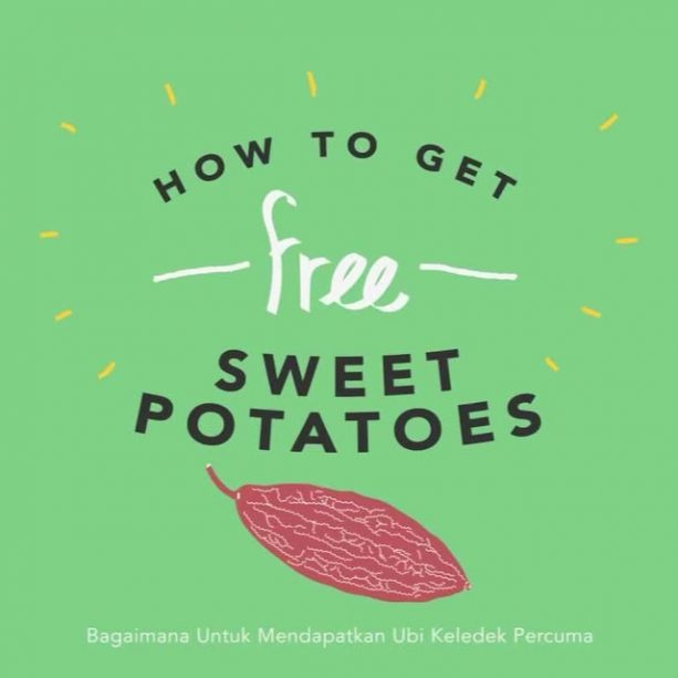 How To Get Free... Sweet Potatoes! Free food has never been this sweet. Watch this video to find out more… LINK IN BIO! Video URL: https://youtu.be/jftk3c7XhMs ABOUT SAYUR IN THE CITY Over the past year, we've been working with @mythinkcity to explore how we can the city by establishing more edible #gardens. As a result of that exploration, we want to highlight and celebrate the vegetables that are so easy to grow in the tropical lowlands of Kuala Lumpur. Produce that grow well in the highlands are different from produce that grow well in the lowlands where we are, hence Sayur In The City was born.