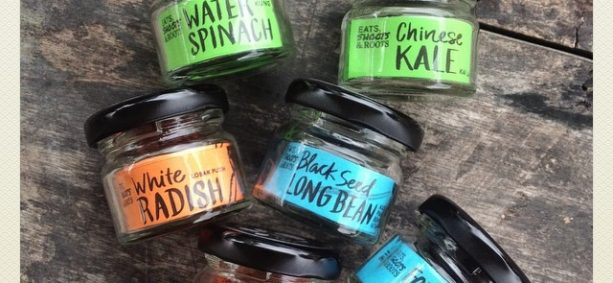 Sneak peek at what's been long overdue: Seed Jars! More to be revealed soon