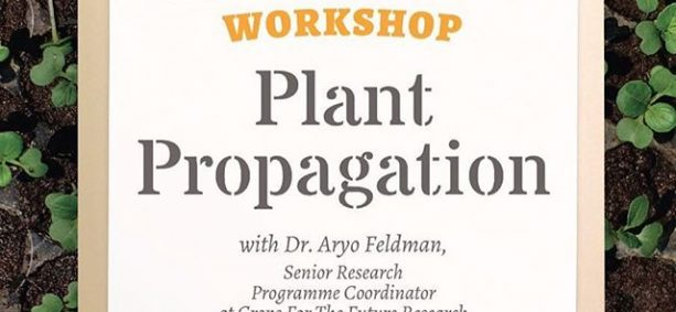 Workshop link in bio! -- Learn the basic science behind the reproduction of plants, how they evolve, and the art of propagating plants in your very own backyard. Join us for our Plant Propagation Workshop on Saturday, 5th November, the 3rd workshop in our 6 month Grow Your Own Sayur In The City programme. Grab the special rate of RM165 if you register early or bring a friend along. The workshop will be held in our space in Bukit Gasing, Petaling Jaya. More info: workshops@eatsshootsandroots.org